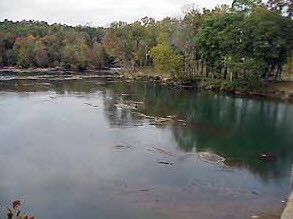 ARK Ocmulgee at Dames